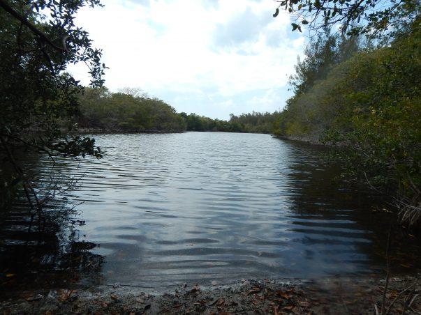 Wulfert Lake