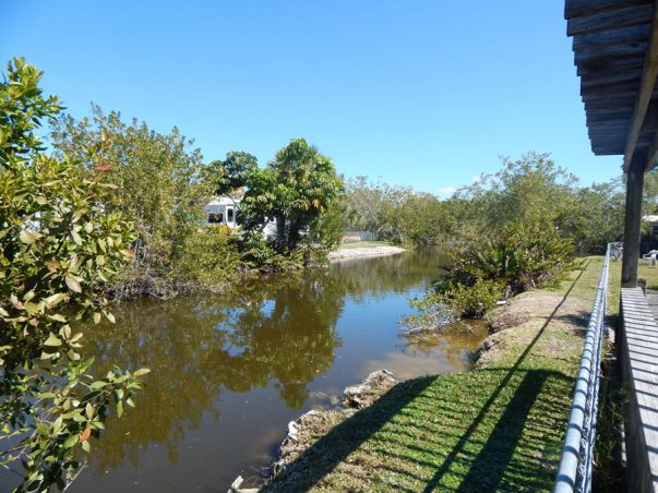 Perwinkle Park: RV Pond