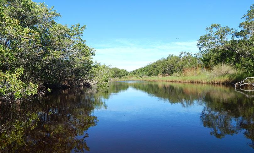 Sanibel River