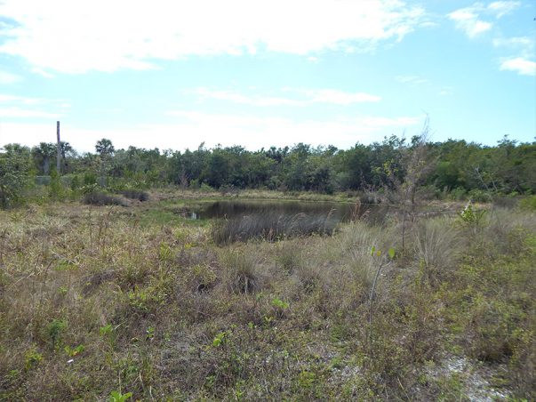 Sanibel Bayous Restoration Lake East – Conservation Lands