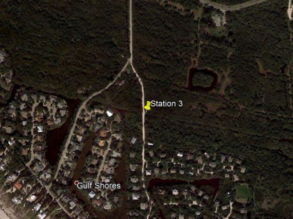 Sanibel Slough: Station 3