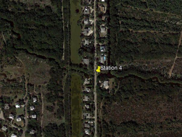 Sanibel Slough: Station 4