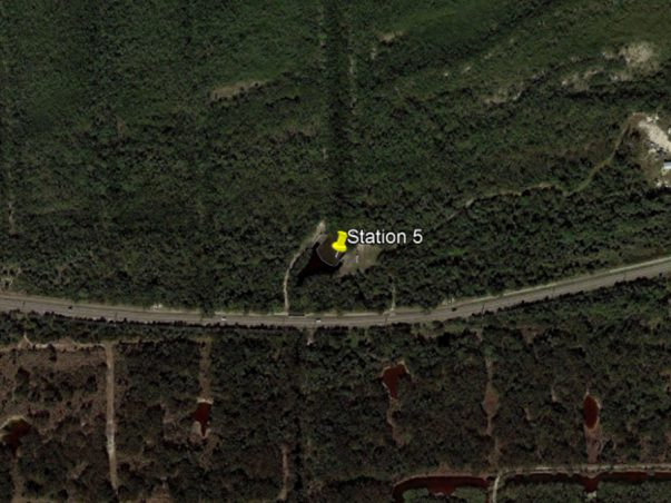 Sanibel Slough: Station 5